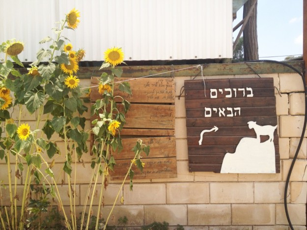1 Sealinthefog Cheese tasting - a Moshav near Jerusalem